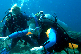 Become a certified padi open water diver